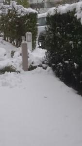 大雪 東京 神奈川